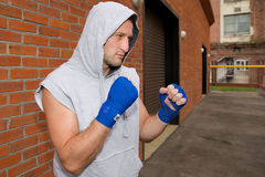 Boxer in the hood Royalty Free Stock Photo