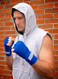 Boxer in the hood Royalty Free Stock Photos