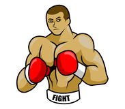 Boxer Stock Images
