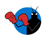 Boxer insect illustration. Draw of funny boxer insect illustration Royalty Free Stock Images