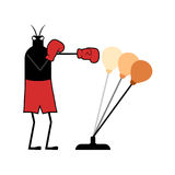 Boxer insect illustration. Draw of funny boxer insect illustration Stock Photography