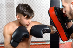 Boxer kicks punching pad Stock Photos