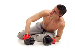 Boxer on knockout  Stock Photography