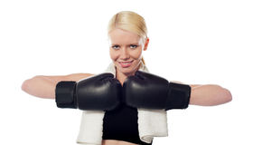 The boxer lady Royalty Free Stock Photos