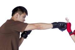 Boxer lokalisiert lizenzfreies stockfoto