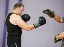 Free Boxer Man At Boxing Training With Punch Mitts Royalty Free Stock Photos - 26709458