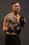 Boxer man with boxing gloves Stock Photo