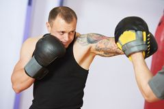 Boxer man at boxing training with punch mitts Stock Image