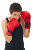 Boxer man defending. Young boxer man defending isolated on white background royalty free stock image