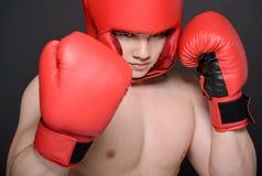 Boxer Man Royalty Free Stock Photo