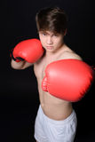 Boxer Man Stock Photography