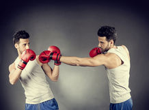 Boxer match Stock Image