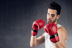Boxer mit blauem Auge lizenzfreies stockbild
