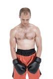 Boxer mit roten Handschuhen Stockfoto