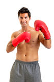 Boxer. Muscular boxer isolated in white Royalty Free Stock Image