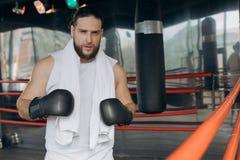 Boxer nach der Ausbildung im Ring Porträt von tragenden boxenden Verbänden des verschwitzten sportiven Boxers lizenzfreies stockfoto