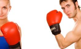 boxer para Fotografia Royalty Free