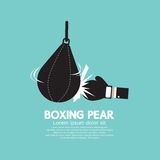 Boxer Pear Boxing Gear Stock Photography