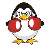Boxer Penguin royalty free stock images