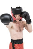 Boxer performing upright stance. On black background Royalty Free Stock Photo