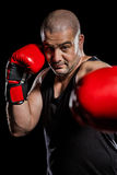 Boxer performing upright stance. On black background Royalty Free Stock Images