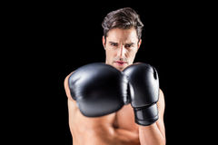 Boxer performing upright stance. On black background Royalty Free Stock Photos