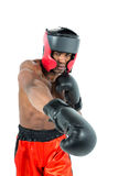 Boxer performing upright stance Stock Image