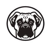 Boxer or pit bull dog head icon vector illustration