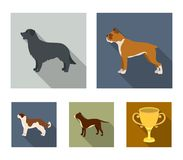 Boxer, pit bull, St. Bernard, retriever.Dog breeds set collection icons in flat style vector symbol stock illustration Stock Images