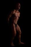 Boxer posing. royalty free stock images