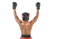 Boxer posing after victory Royalty Free Stock Images