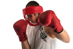 Boxer practicing Royalty Free Stock Photography