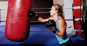 Boxer practicing boxing with punching bag. In fitness studio stock footage