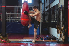 Boxer practicing boxing with punching bag Royalty Free Stock Photos