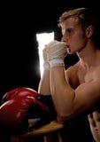 Boxer Praying Stock Photos