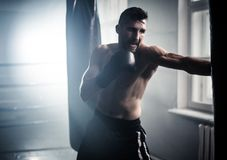 Boxer preparing for a hard fight stock photography