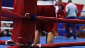 Boxer preparing to fight stock video footage