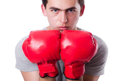Boxer preparing for the tournament Royalty Free Stock Photos