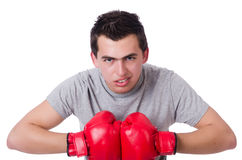 Boxer preparing for the tournament isolated Royalty Free Stock Images
