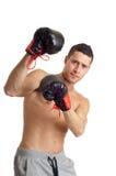 Boxer  protecting itself Royalty Free Stock Photo