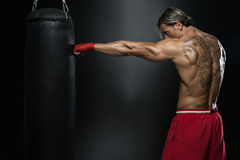 Boxer With Punch Bag In Action Stock Image