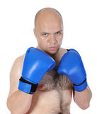 Boxer punches Stock Photography
