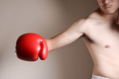 Boxer punching Stock Images