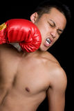 Boxer Punching Stock Image