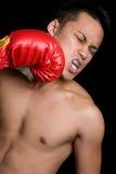 Boxer Punching. Asian male knockout boxer punching Stock Image