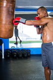 Boxer punching bag in fitness studio Royalty Free Stock Images