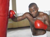 Boxer Punching Bag Stock Photography