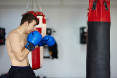 Boxer with the punching bag Stock Photography