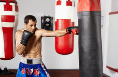 Boxer with the punching bag Stock Photos