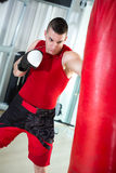 Boxer punching bag Stock Images